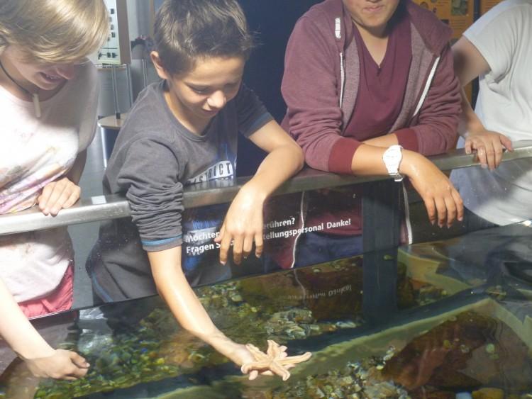 Fabi hält einen Seestern im Multimar Wattforum